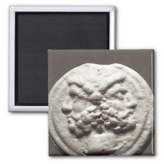 Five coins depicting Janus, Jupiter Fridge Magnets