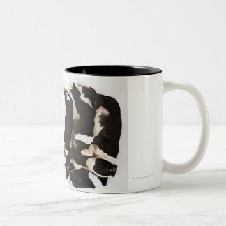 Five Harlequin Great Dane puppies sleeping Mug