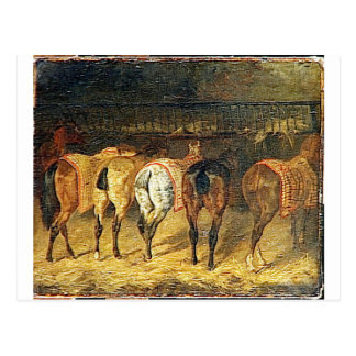 Five horses seen from behind with croupes postcard