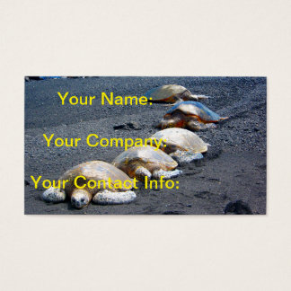 Five Lazy Turtles Lying In The Sand Business Card