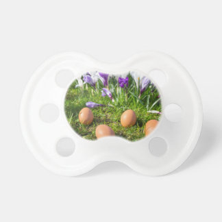 Five loose eggs lying near blooming crocuses dummy