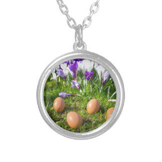 Five loose eggs lying near blooming crocuses silver plated necklace