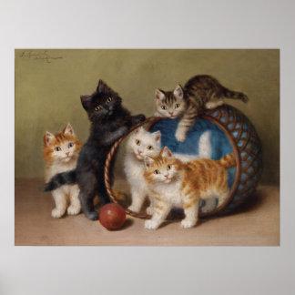 Five Playful Kittens Matte Poster