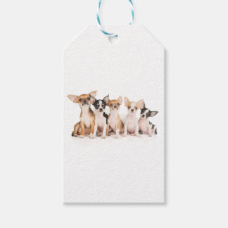 Five puppies gift tags