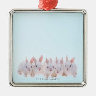 Five Rabbits Christmas Ornaments