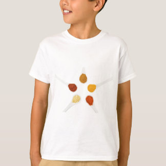 Five seasoning spices on porcelain spoons T-Shirt