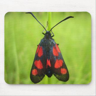Five-Spot Burnet Moth Mouse Mat