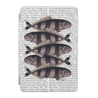Five Striped Fish iPad Mini Cover