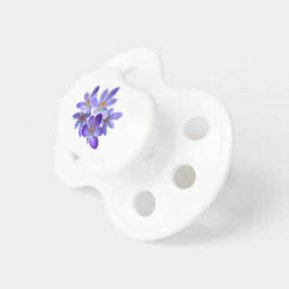 Five violet crocuses 05.0, spring greetings dummy