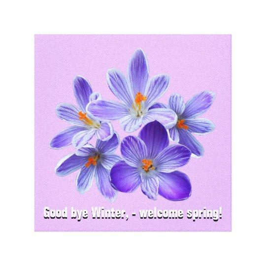 Five violet crocuses 05.4.T, spring greetings Canvas Print