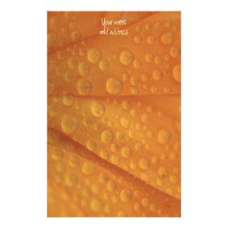 fizzie orange customized stationery
