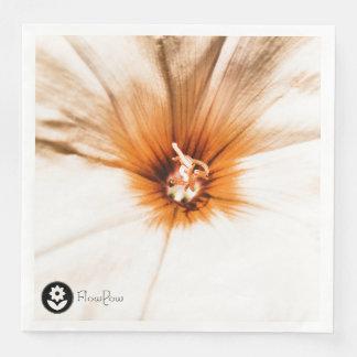 FʟᴏᴡPᴏᴡ | Bindweed ~ Amber Paper Napkin