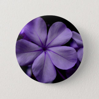 FʟᴏᴡPᴏᴡ | Plumbago Zoom ~ Amethyst 6 Cm Round Badge