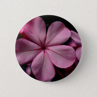 FʟᴏᴡPᴏᴡ | Plumbago Zoom ~ Rose Quartz 6 Cm Round Badge