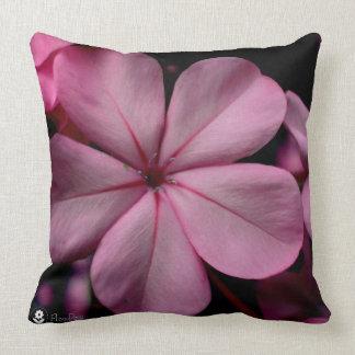 FʟᴏᴡPᴏᴡ | Plumbago Zoom ~ Rose Quartz Cushion