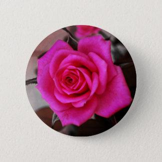 FʟᴏᴡPᴏᴡ   Rose ~ Fairy Tale 6 Cm Round Badge
