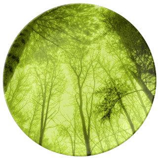 FʟᴏᴡPᴏᴡ | Wood ~ Lime Plate