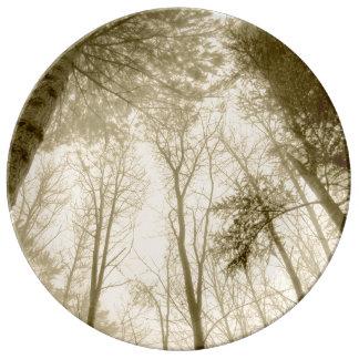 FʟᴏᴡPᴏᴡ | Wood ~ Sepia Plate