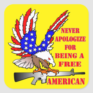 Flag Eagle Ar-15 M16 Never Apologize For Being Square Sticker
