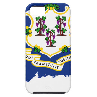 Flag Map Of Connecticut iPhone 5 Covers