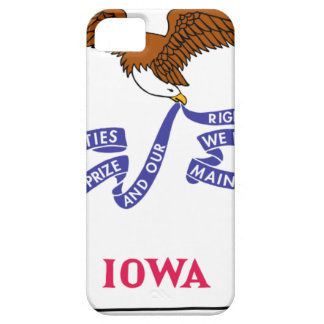 Flag Map Of Iowa Barely There iPhone 5 Case