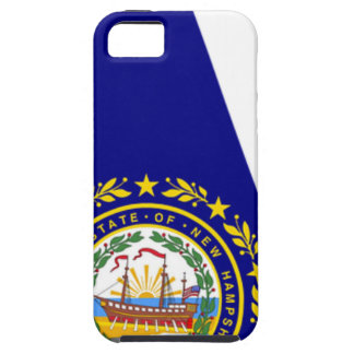 Flag Map Of New Hampshire iPhone 5 Covers