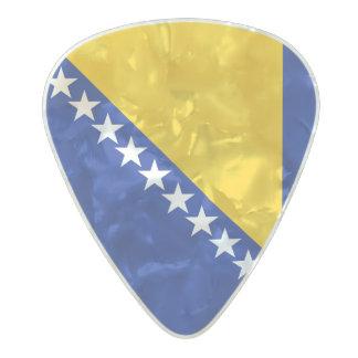 Flag of Bosnia and Herzegovina Guitar Picks