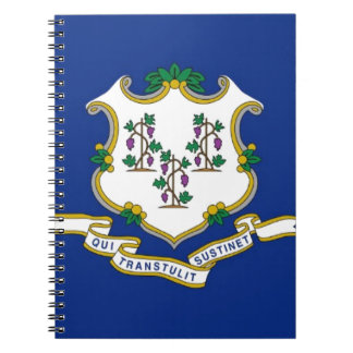 Flag Of Connecticut Notebook