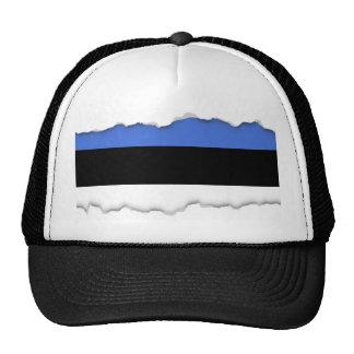 Flag of Estonia Cap