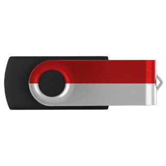 Flag of Hesse USB Flash Drive