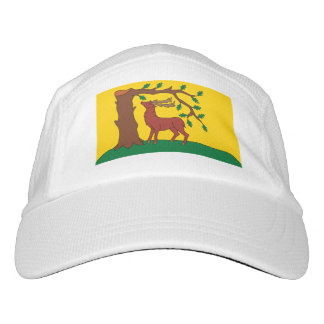 Flag of historic county of Berkshire Hat