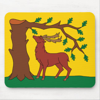 Flag of historic county of Berkshire Mouse Pad