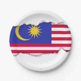 Flag of Malaysia Paper Plate