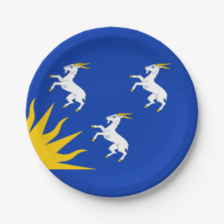 Flag of Merionethshire Paper Plate