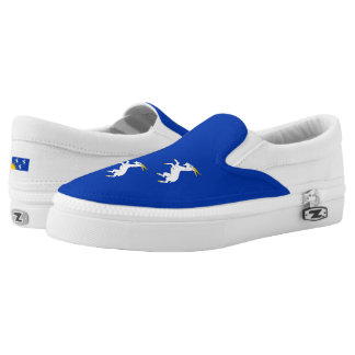 Flag of Merionethshire Slip-On Shoes