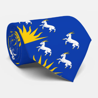 Flag of Merionethshire Tie