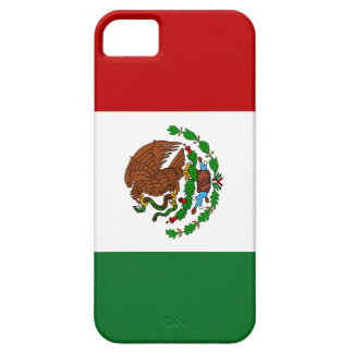 Flag of Mexico iPhone 5 Cases