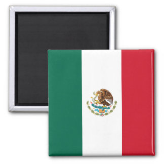 Flag of Mexico Square Magnet
