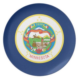 Flag Of Minnesota Plate