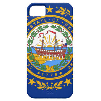 Flag Of New Hampshire Barely There iPhone 5 Case