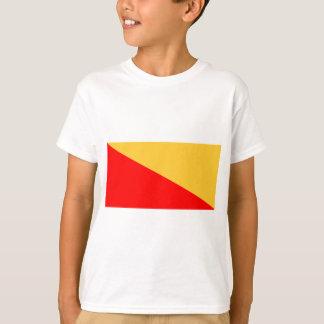 Flag of Palermo Shirts