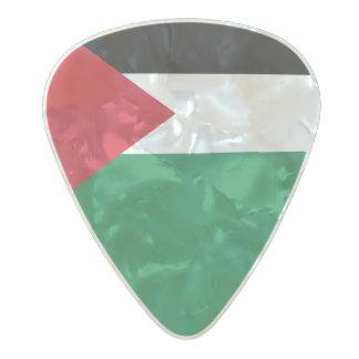 Flag of Palestine Guitar Picks