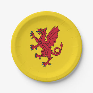 Flag of Somerset Paper Plate