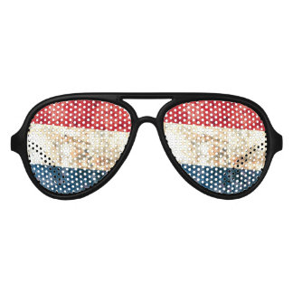 Flag of the Netherlands Aviator Sunglasses
