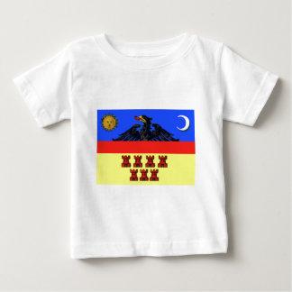 Flag_of_Transylvania Baby T-Shirt