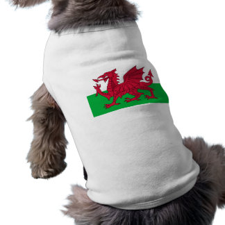 Flag of Wales - The Red Dragon - Baner Cymru Shirt