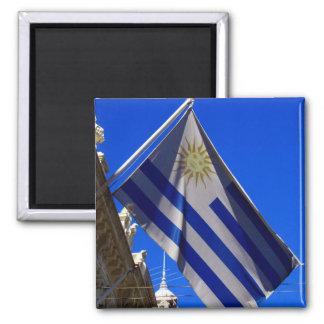 flag uruguay magnet