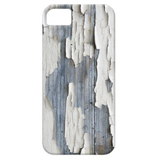 Flaky Paint iPhone SE+5/5S Case
