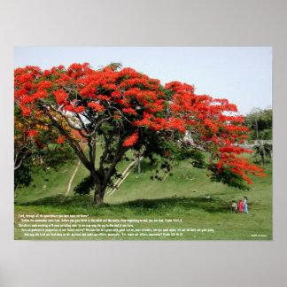 Flamboyan Psalm 90 Poster