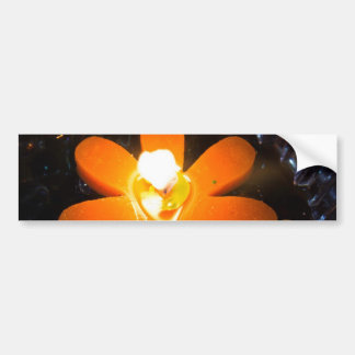 Flame from an orange floating candle bumper sticker
